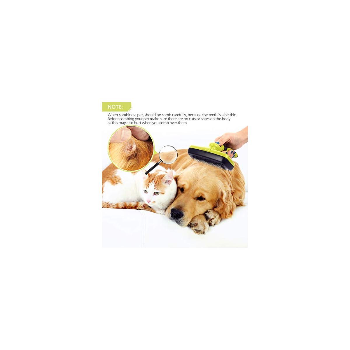 xuenisidan Spazzola Autopulente per Cani Gatti Conigli per Eliminare Pelo Superfluo Morto e Sottopelo Prevenire la Perdita Blu Riduce 90/% della Perdita dei Peli