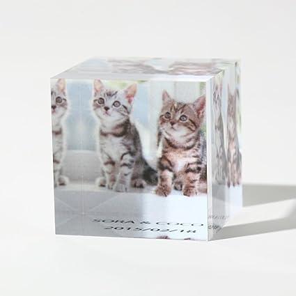 キューブ プリント CubePDF
