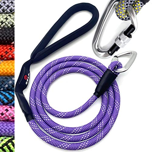 Amazon.com: Enthusiast Gear Climbing Rope Dog Leash with ...