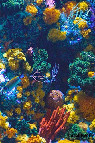 Coral Reef: Journal for Marine Biologists & Ocean Lovers Everywhere