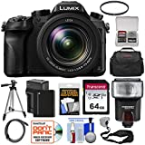 Panasonic Lumix DMC-FZ2500 4K Wi-Fi Digital Camera with 64GB Card + Battery & Charger + Case + Flash + Tripod + Filter + Strap + Kit For Sale