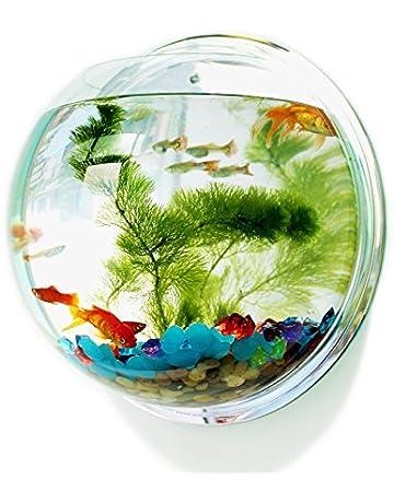 Pin Si Jia Cuenco de peces acrílico para colgar en la pared, acuario, acuario