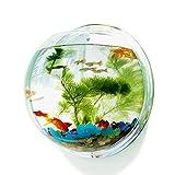 Pinsjar 12.8 Inch Acrylic Fish Bowl Wall Hanging Aquarium Tank Aquatic Pet Supplies Pet Products Wall Mount Fish Tank (Mirror Back)