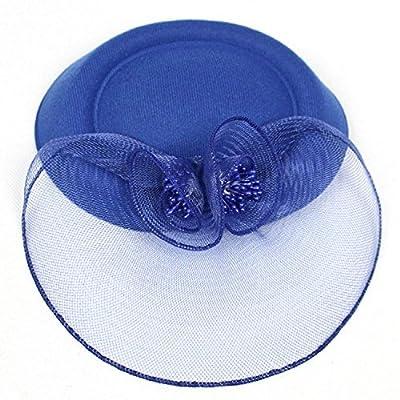 Ahugehome Fascinator Hair Clip Headband Pillbox Hat mesh Rose Flower Wedding Tea Party