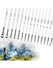 15 Pcs Miniature Detail Paint Brushes Set, Artist Micro Fine Detailing Art Painting Brush Kit for Kids Adults, Small Tiny Nylon Hair Paintbrush for Acrylic, Watercolor, Oil, Face, Nail, Craft Paints