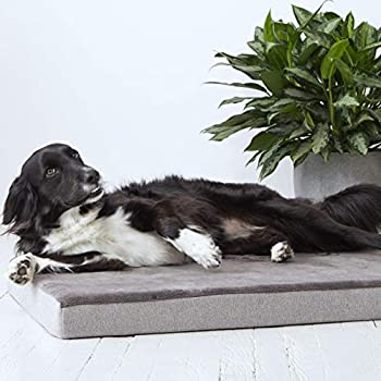 Amazon.com : Harmony Grey Lounger Memory Foam Dog Bed, 28