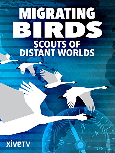 Migrating Birds: Scouts of Distant Worlds