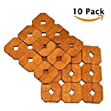 10 Sets Bamboo Coasters Rustic Eco Kitchen Trivets Dining Table Beaded Placemats Thick Wood Place Mats Wine Beer for Teapot Coffee Mugs Cups Hot Dish Pads Dining Room Decoration Heating Insulation B