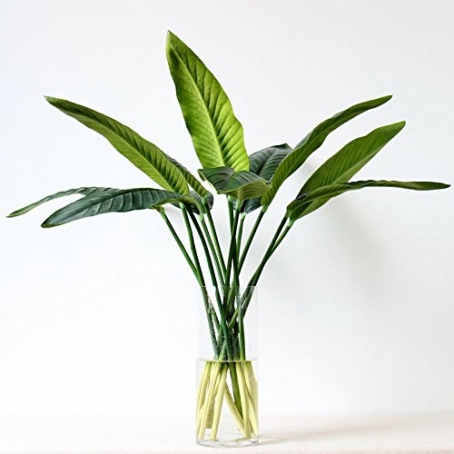 Pannow 6 Pack Artificial Plant Leaves, Bird Paradise Single Leaf Fake Tree Plant Flower for Home Decor(80cm/31.5inch)