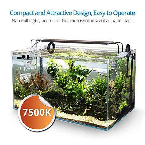 NICREW BrightLED Aquarium Light, Full Spectrum Fish Tank Light for Planted Tanks, 18 to 24-inch, 18-Watt, 1200 LM, 7500K