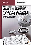 Praxishandbuch Auslandseinsatz von Mitarbeitern: Die optimale Gestaltung aus Unternehmersicht (De Gruyter Praxishandbuch)