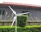 HigooTM-50W-Residential-Wind-Generator-Wind-Turbine-Kit