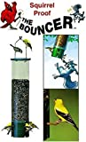 Bouncer Squirrel Proof Tube Feeder Review