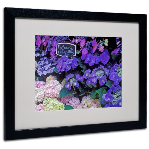 - Paris Flower Market Hydrangeas Framed Art by Kathy Yates, Black Frame, 16 by 20-Inch