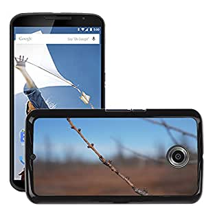 Hot Style Cell Phone PC Hard Case Cover // M00308369 Nature Ottawa Outdoor Spring Plant // LG Google Nexus 6