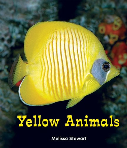 Yellow Animals (All about a Rainbow of Animals)