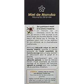 COMPTOIRS ET COMPAGNIES Spray Gorge/Boche Bio Miel de Manuka Actif IAA10+ (MGO263+) Propolis, 25 ml