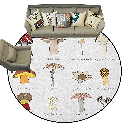 (Mushroom,Indoor Outdoor Rugs Colorful Fungi Pattern Blusher Boletus Sketch Style Plants Autumn Illustration D54 Super Soft Carpet Floor Mat Home Decor)