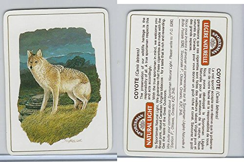 C18-0 Carreras, Wild Animals, 1985, Coyote