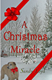 A Christmas Miracle: An uplifting Short Story (Christmas Miracle Series Book 1)