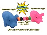 """Animolds All Things Piggies Gift Package """"Over 15 Fun Piggie Toys"""" Great Gift Pack Playdates Bulk and Wholesale Pig Decorations"""