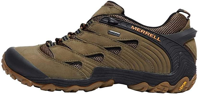 Cham 7 GTX Leisure and Hiking Shoes