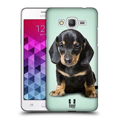 Head Case Designs Sitting Dachshund Puppy Popular Dog Breeds Hard Back Case Cover for Samsung Galaxy Grand