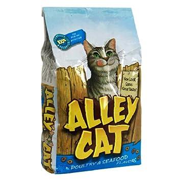 Amazon.com  Alley Cat Dry Cat Food, 3.15 lb  Dry Pet Food