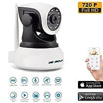 Wireless WiFi Security Camera - IP Video Security Surveillance Dog Camera