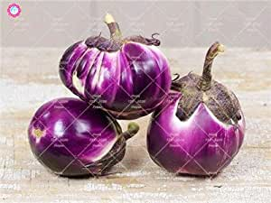 Las semillas 100pcs Ronda Negro berenjena orgánicos de la herencia de semillas vegetales no modificados genéticamente plantas de jardín buen gusto rico en vitaminas 2