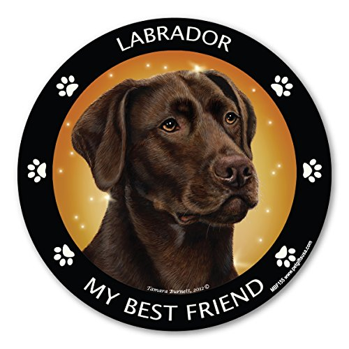 Labrador Chocolate Sticker (Chocolate Labrador My Best Friend Magnet)