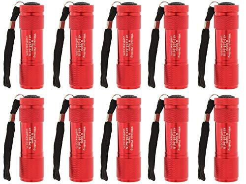 Set of 10 Personalized Handheld LED Flashlights, 3.5