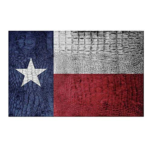 Crocodile Texture Base - YOLIYANA Western Decor Durable Door Mat,Texas State Flag Painted on Luxury Crocodile Snake Skin Texture Looking Patriotic Emblem Decorative for Home Office,15.7
