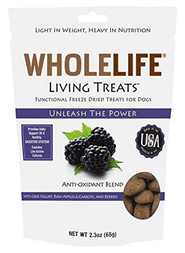 Whole Life Pet Living Treats for Dogs-Digestive Support with Yogurt and Berries, 2.3-Ounce