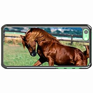 iPhone 5C Black Hardshell Case horse mane grass Desin Images Protector Back Cover