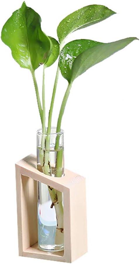 CCZMD Recipiente de Vidrio Transparente Planta de Maceta de Flores decoración de jardín de casa Maceta de Flores Marco de Madera con Marco de Vaso de Vidrio Marco de Madera