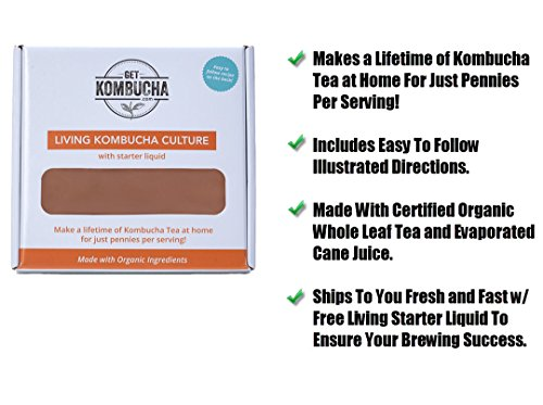 All Natural Organic Kombucha SCOBY - Largest Kombucha Mother Cultures In North America - Non Dehydrated, (6.5 inches in diameter) - Shipped With Organic Living Starter Tea Liquid 3 Makes A Lifetime of Kombucha Tea, 1 Gallon At A Time! Certified organic and fair trade ingredients used for both the kombucha mother and starter liquid 10+ years of providing the largest cultures in all of North America to thousands of home brewers