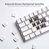 RK ROYAL KLUDGE RK61 Wireless 60% Mechanical Gaming Keyboard, Ultra-Compact Bluetooth Keyboard with Tactile Brown Switch, Compatible for Multi-Device Connection, White