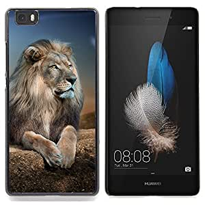 Queen Pattern - FOR HUAWEI P8 Lite - Lion Royal Night Nature Africa Savannah Animal - Cubierta del caso de impacto con el patr???¡¯???€????€????