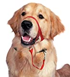 Barkless Dog Head Collar, No Pull Training Tool Dogs on Walks, Includes Free Training Guide, 5 (XXL, Red)
