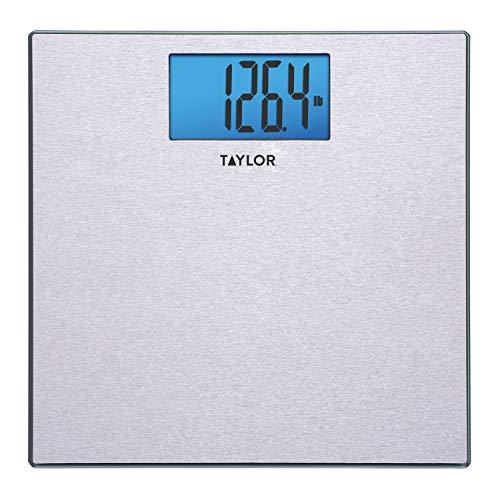Taylor Digital 440 Pound