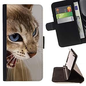BullDog Case - FOR/HTC One M7 / - / cat blue eyes brown white angry teeth /- Monedero de cuero de la PU Llevar cubierta de la caja con el ID Credit Card Slots Flip funda de cuer