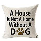best Decorative Pillow Cover