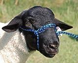 HLTR POLY ROPE ADJ SHEEP H.BL/BK &