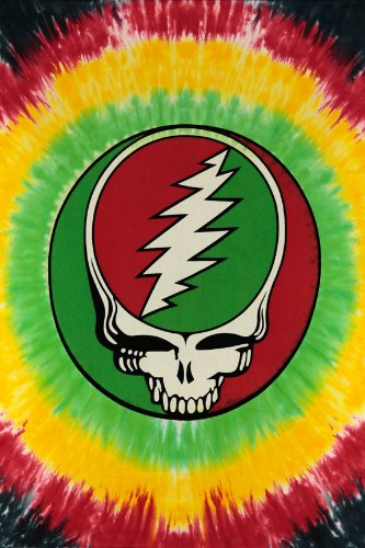Sunshine Joy Grateful Dead Mini Tapestry Steal Your Face Rasta Tie Dye Wall Art 30x45 Inches