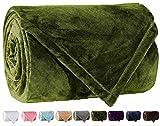 LBRO2M Fleece Bed Blanket Super Soft Warm Fuzzy Velvet Plush Throw Lightweight Cozy