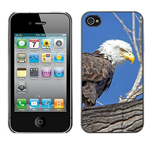 Premio Sottile Slim Cassa Custodia Case Cover Shell // F00026001 aigle de chasse // Apple iPhone 4 4S 4G