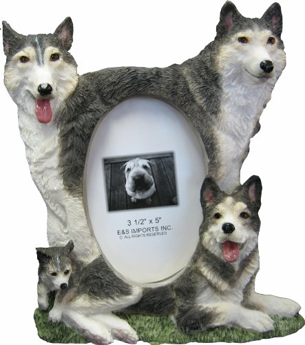 (Husky Picture Frame Holds Your Favorite 3 x 5 Inch Photo,  A Hand Painted Realistic Looking Husky Family Surrounding  Your Photo. This Beautifully Crafted Frame is A Unique Accent To Any Home or Office. The Husky Picture Frame Is The Perfect Gift For Husky Owners And Lovers!)