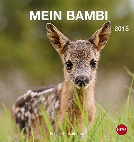 Rehkitz Postkartenkalender - Kalender 2018