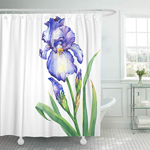 Emvency Shower Curtain Green Aquarel The Branch Flowering Blue Iris Bud Watercolor Shower Curtains Sets with Hooks 72 x 72 Inches Waterproof Polyester Fabric
